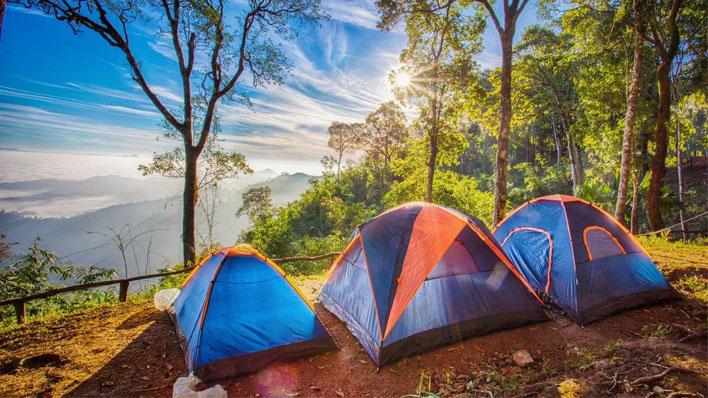 yazın kamp